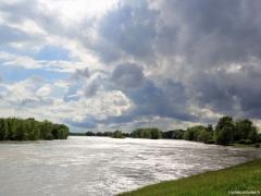 Entre Chateauneuf-sur-Loire et Jargeau