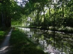 Entre Chailly et Montargis